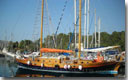 Search for traditional wooden yachts